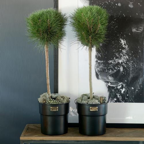 City Loft Flower Pot black L 463310 Riviera Maison
